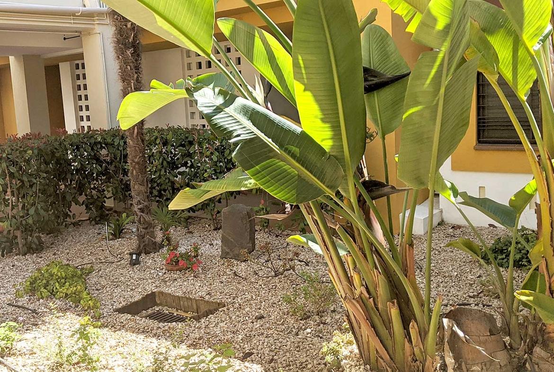 costa-esuri-net-palmeras-urbanizacion-marina